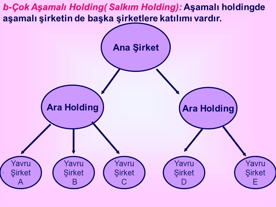 Ana Şirket Ara Holding Ara Holding
