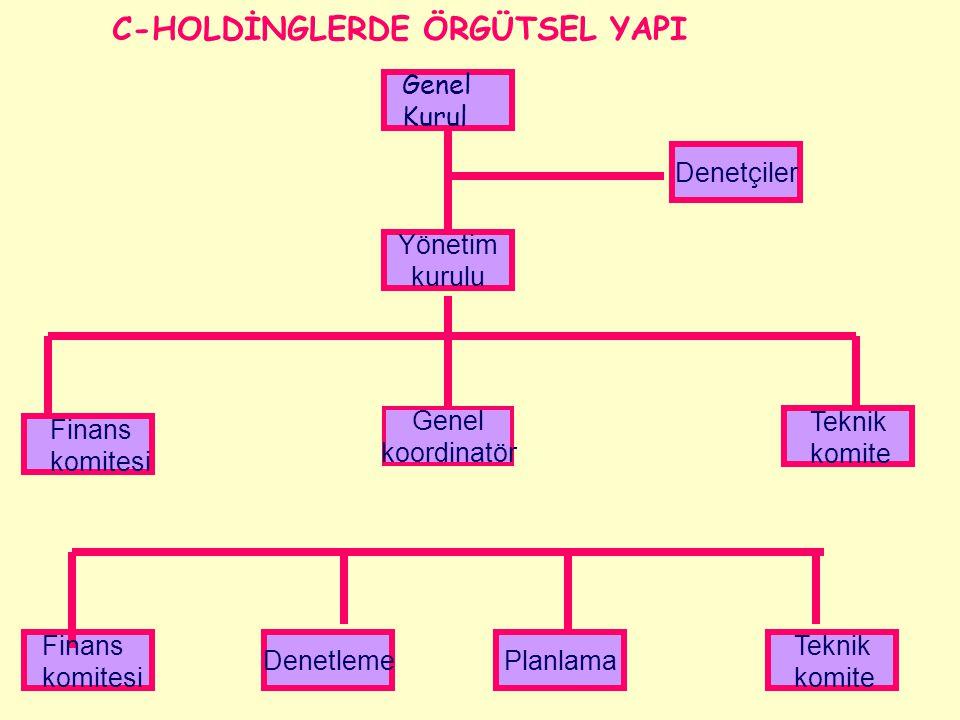 C-HOLDİNGLERDE ÖRGÜTSEL YAPI
