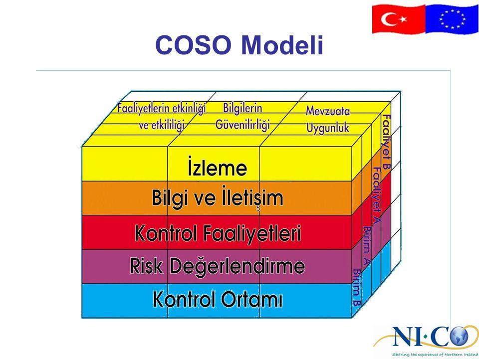 COSO Modeli