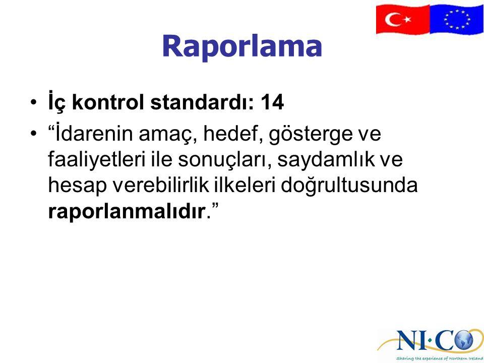 Raporlama İç kontrol standardı: 14