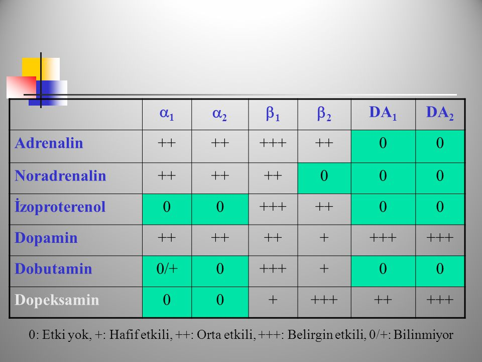 1 2 1 2 DA1 DA2 Adrenalin ++ +++ Noradrenalin İzoproterenol