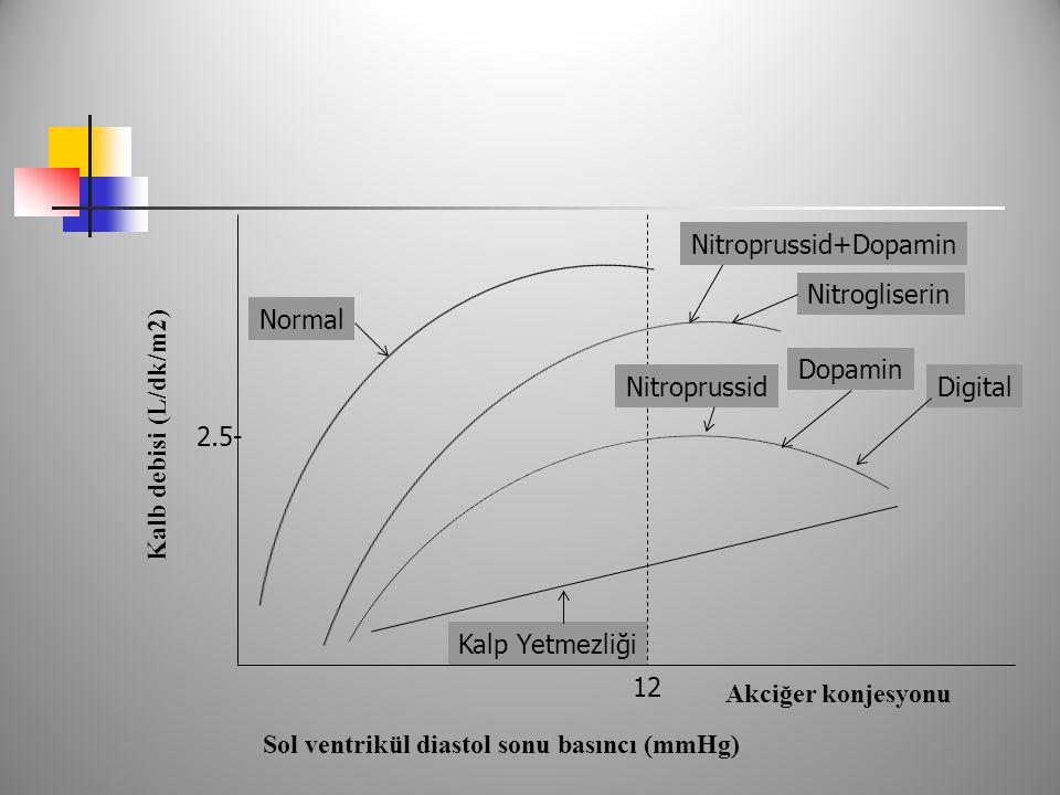 Nitroprussid+Dopamin