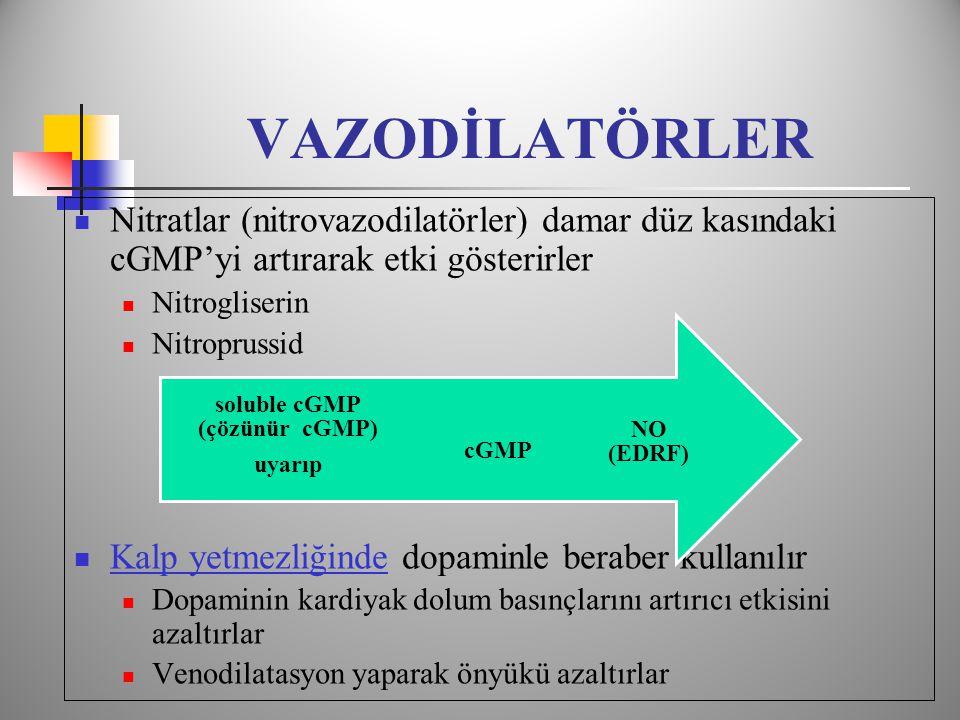 soluble cGMP (çözünür cGMP)