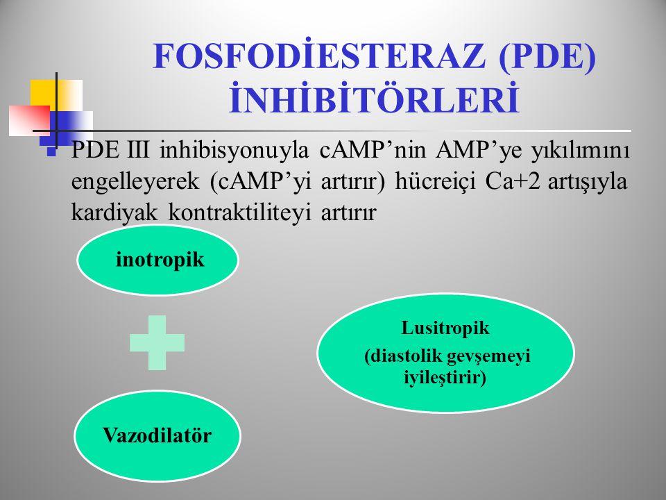 FOSFODİESTERAZ (PDE) İNHİBİTÖRLERİ