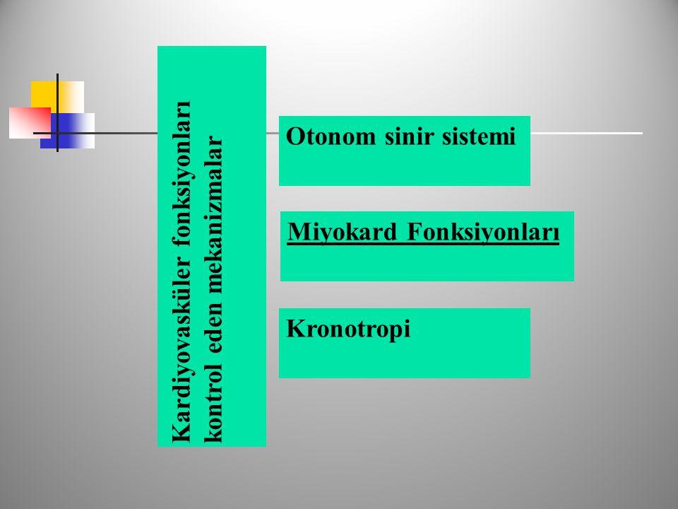 Kardiyovasküler fonksiyonları kontrol eden mekanizmalar