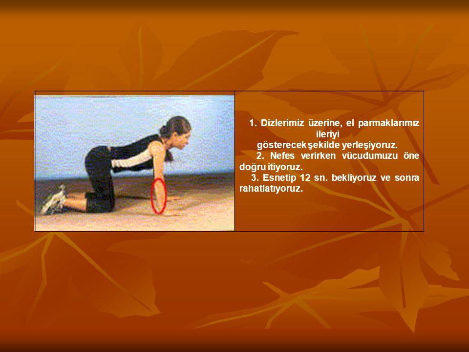 2. Nefes verirken vücudumuzu öne doğru itiyoruz.