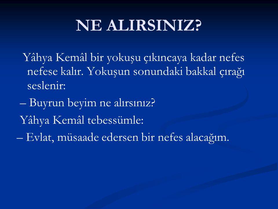 NE ALIRSINIZ