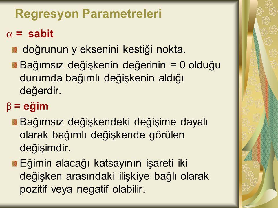 Regresyon Parametreleri