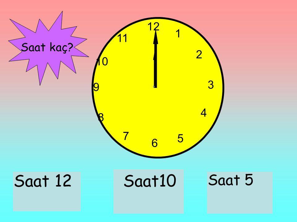 12 1 11 Saat kaç 2 10 3 9 4 8 7 5 6 Saat 12 Saat10 Saat 5