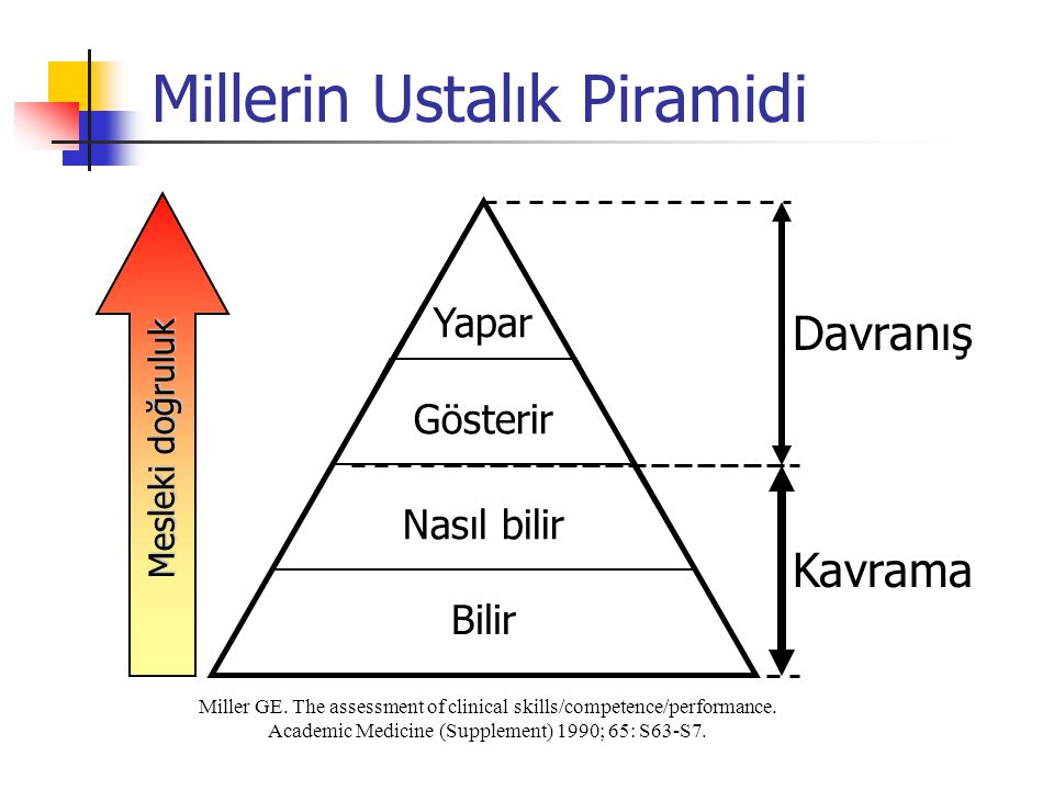 Millerin Ustalık Piramidi