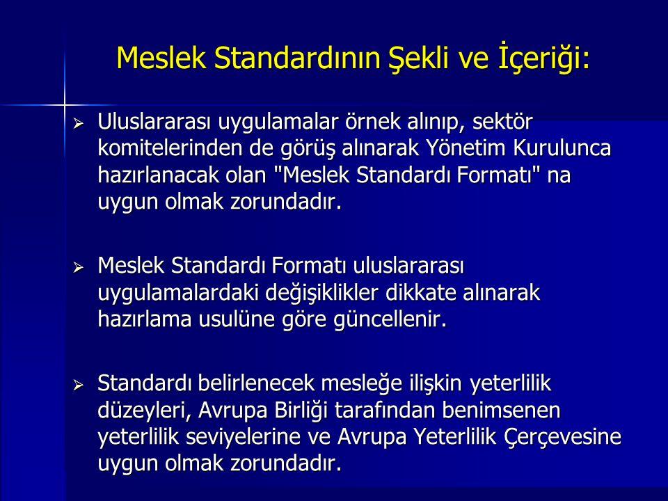 Meslek Standardının Şekli ve İçeriği:
