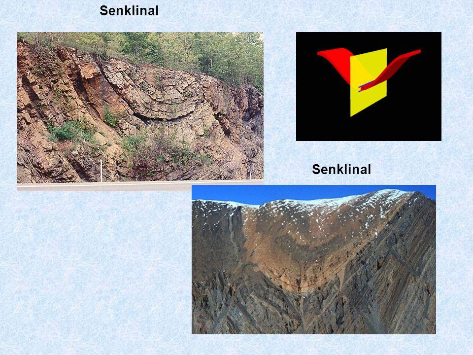 Senklinal Senklinal