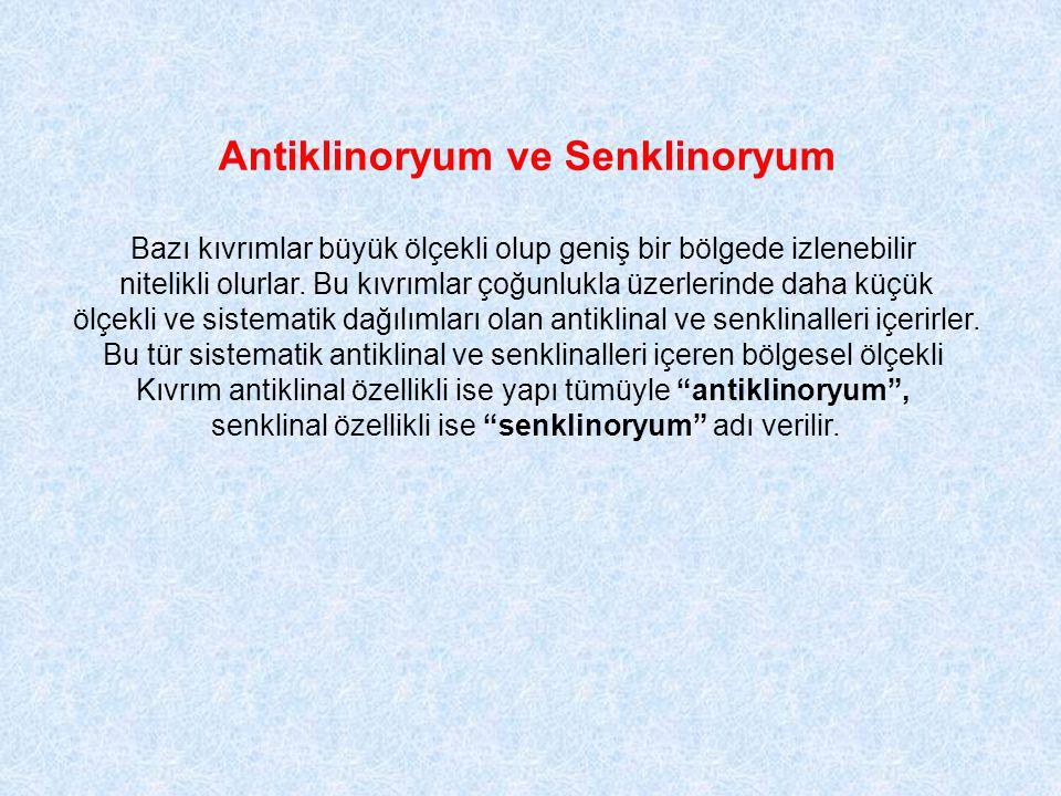 Antiklinoryum ve Senklinoryum