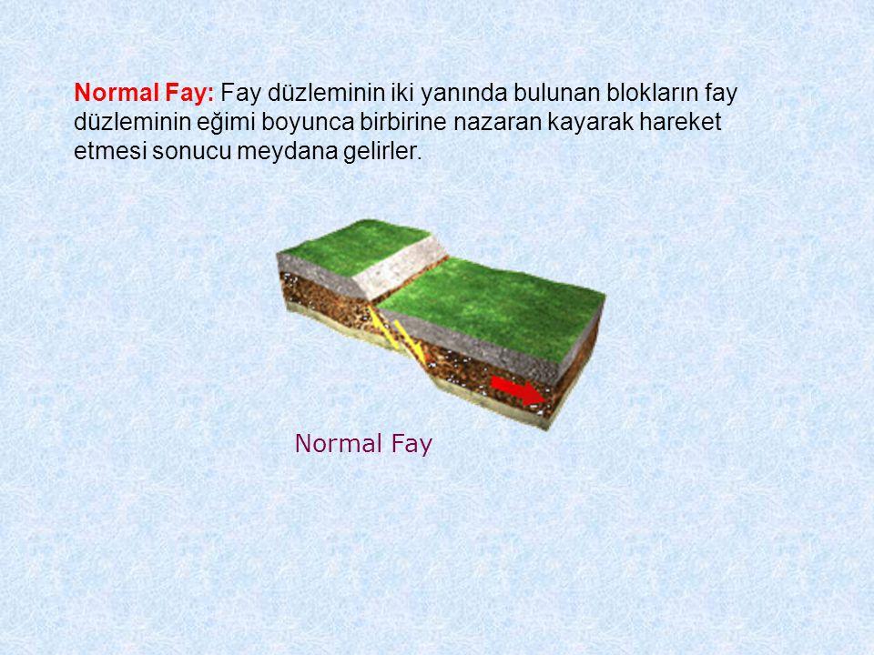 Normal Fay: Fay düzleminin iki yanında bulunan blokların fay düzleminin eğimi boyunca birbirine nazaran kayarak hareket etmesi sonucu meydana gelirler.