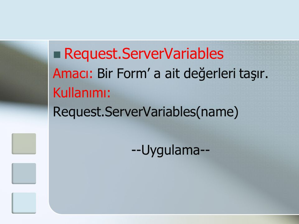 Request.ServerVariables