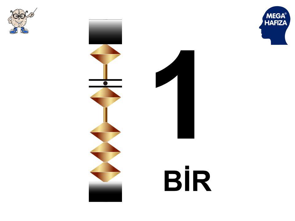 1 BİR