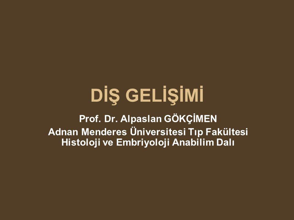 Prof. Dr. Alpaslan GÖKÇİMEN
