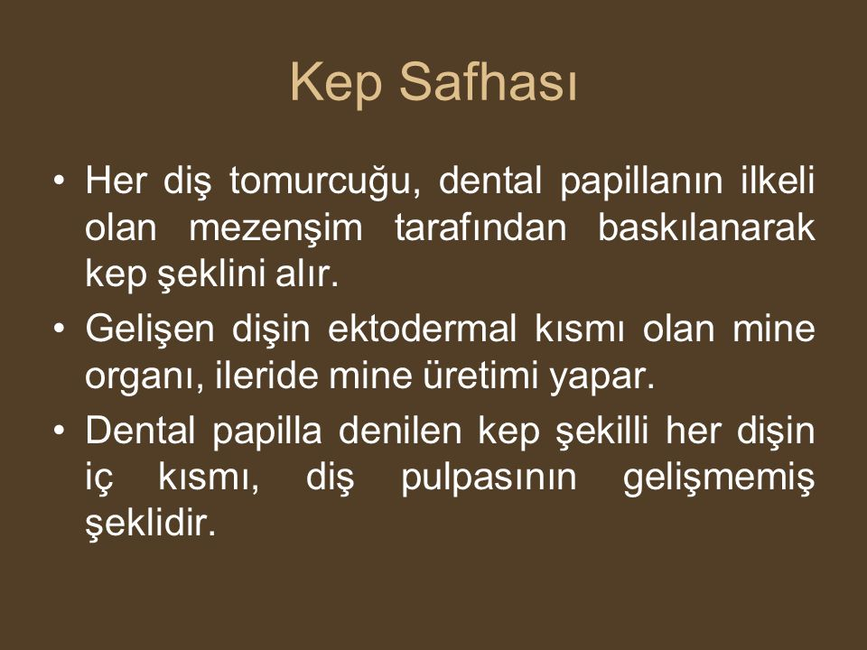 Kep Safhası Her diş tomurcuğu, dental papillanın ilkeli olan mezenşim tarafından baskılanarak kep şeklini alır.