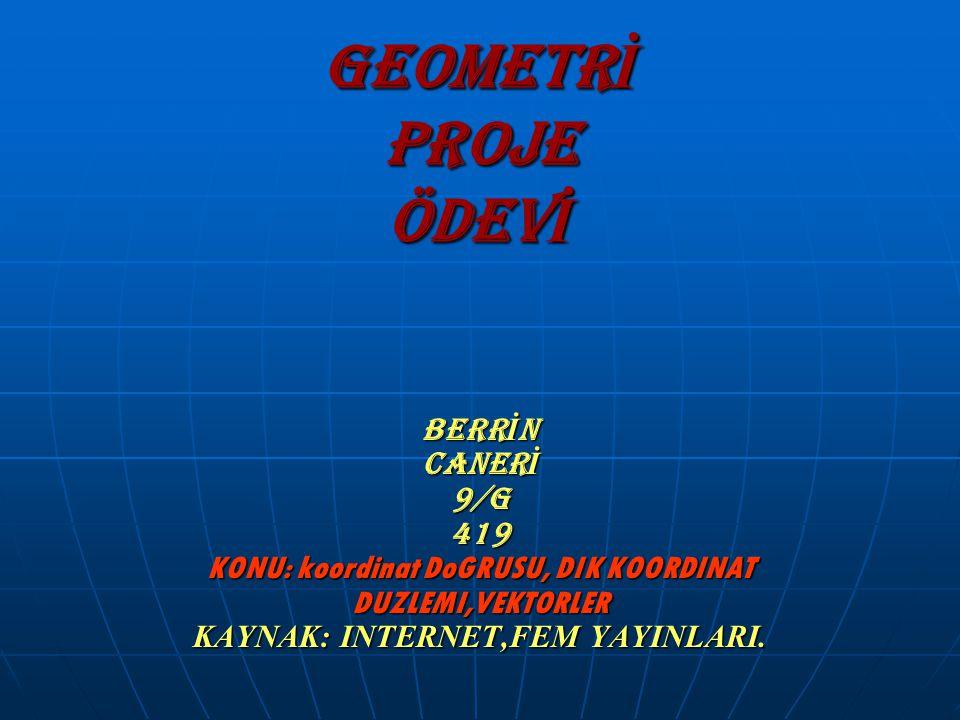 GEOMETRİ PROJE ÖDEVİ BERRİN CANERİ 9/G 419 KONU: koordinat DoGRUSU, DIK KOORDINAT DUZLEMI,VEKTORLER KAYNAK: INTERNET,FEM YAYINLARI.