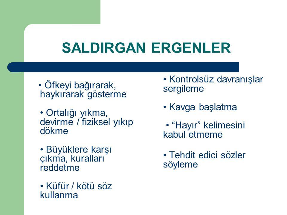 SALDIRGAN ERGENLER