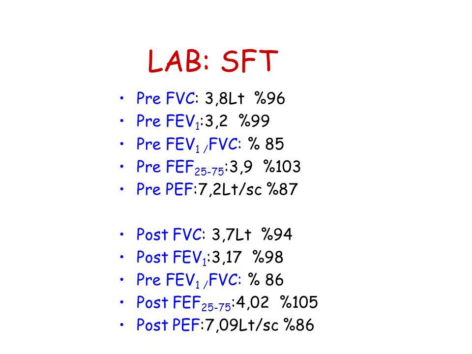 LAB: SFT Pre FVC: 3,8Lt %96 Pre FEV1:3,2 %99 Pre FEV1 /FVC: % 85