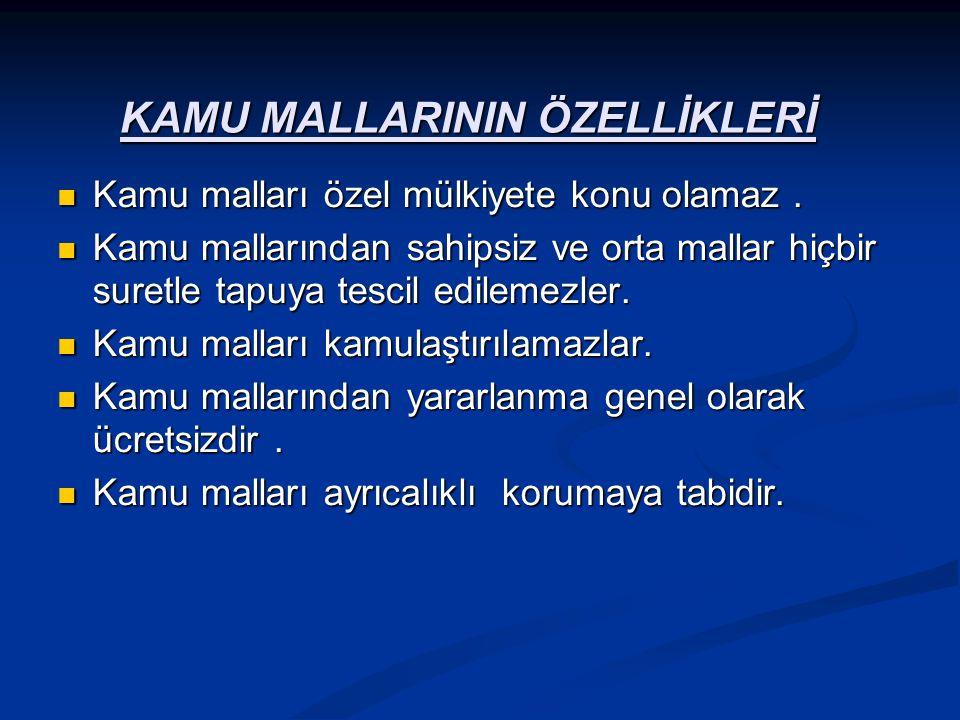 KAMU MALLARININ ÖZELLİKLERİ