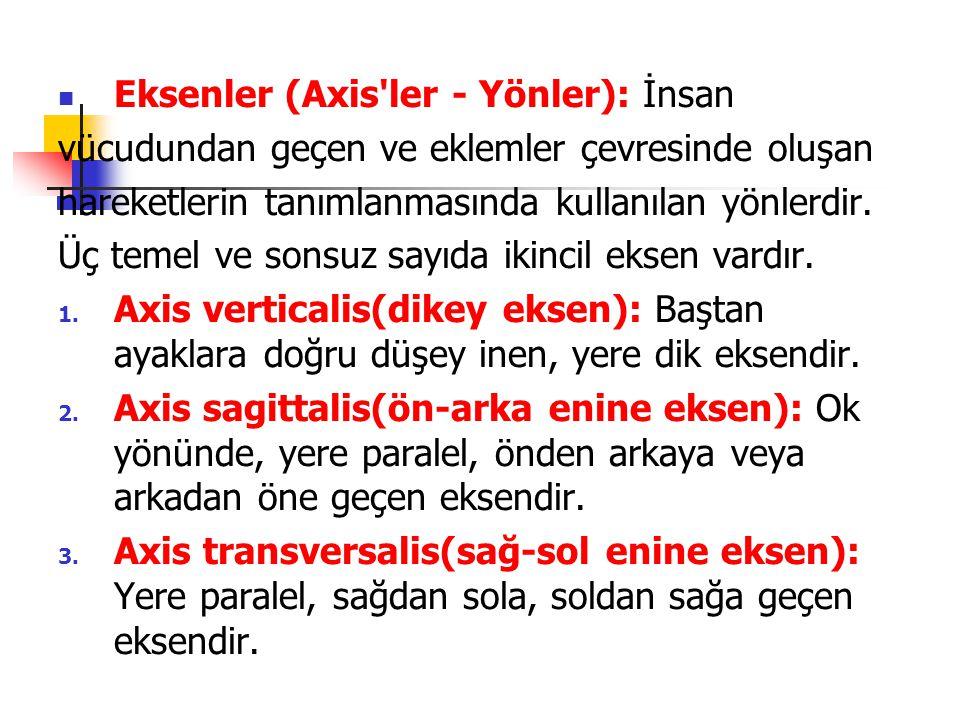 Eksenler (Axis ler - Yönler): İnsan