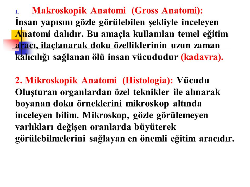 Makroskopik Anatomi (Gross Anatomi):
