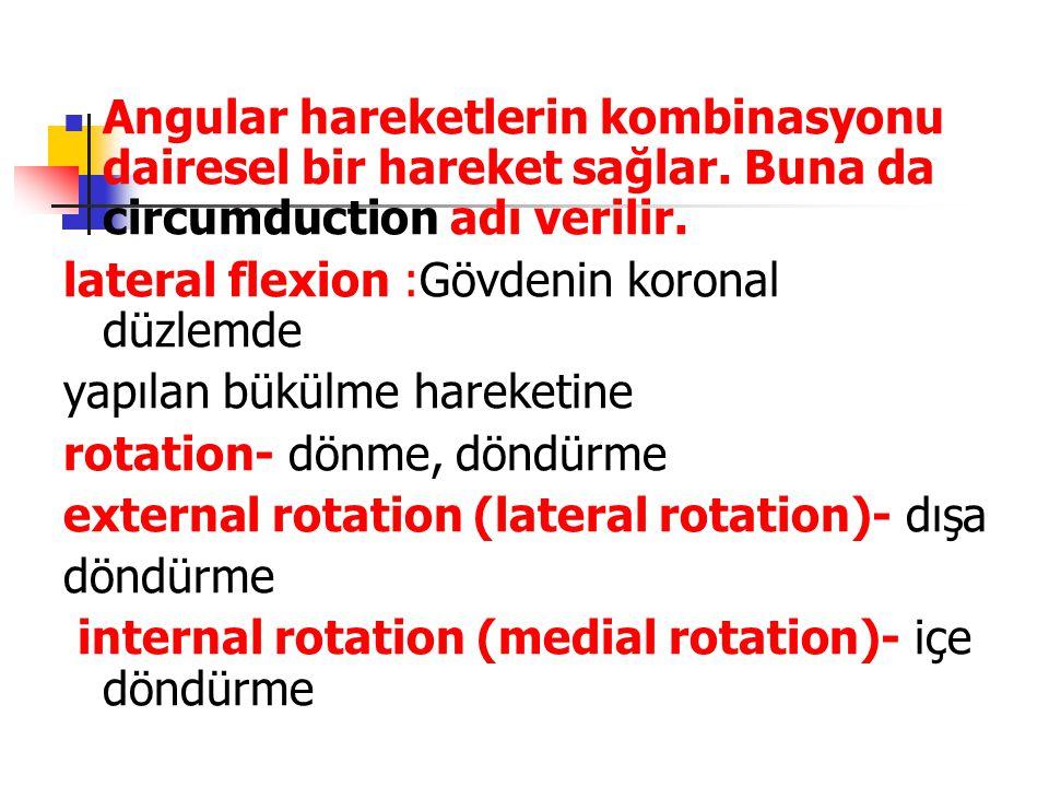 Angular hareketlerin kombinasyonu dairesel bir hareket sağlar