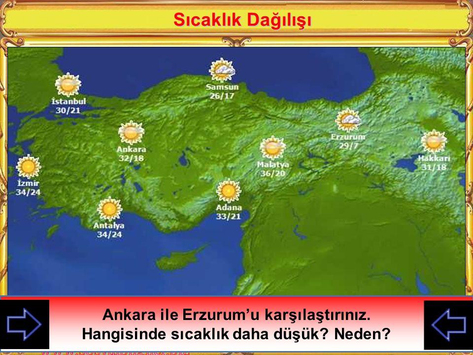 Sıcaklık Dağılışı Ankara ile Erzurum'u karşılaştırınız.