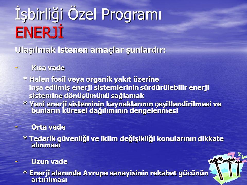 İşbirliği Özel Programı ENERJİ