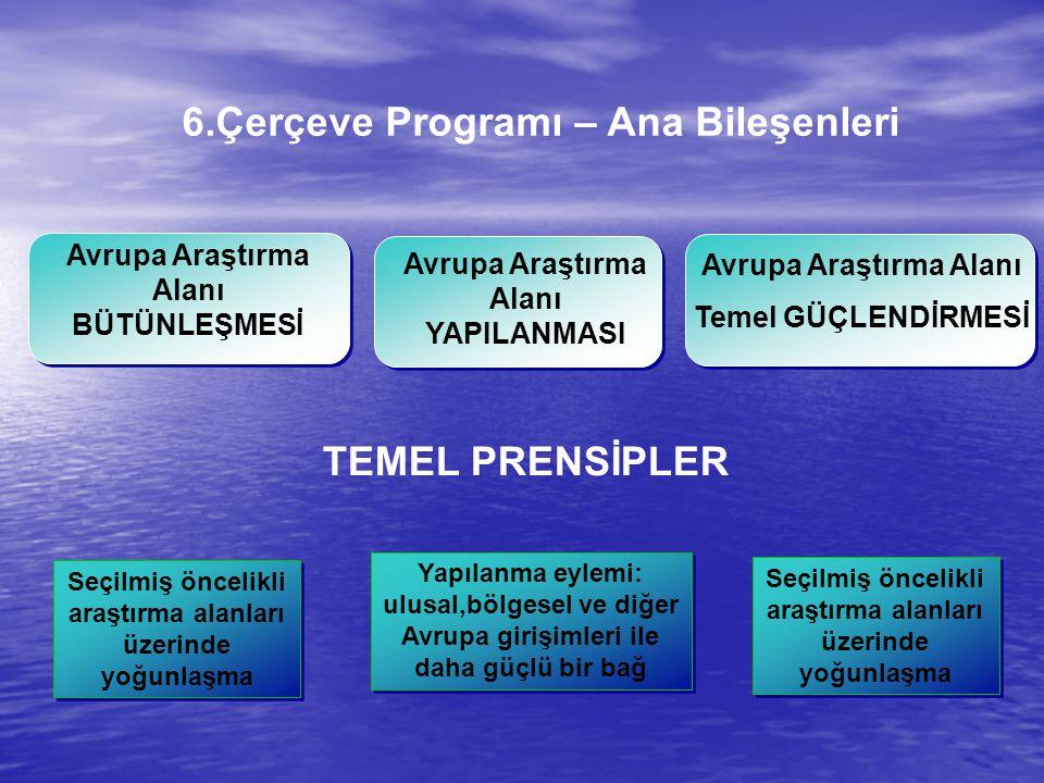 6.Çerçeve Programı – Ana Bileşenleri TEMEL PRENSİPLER