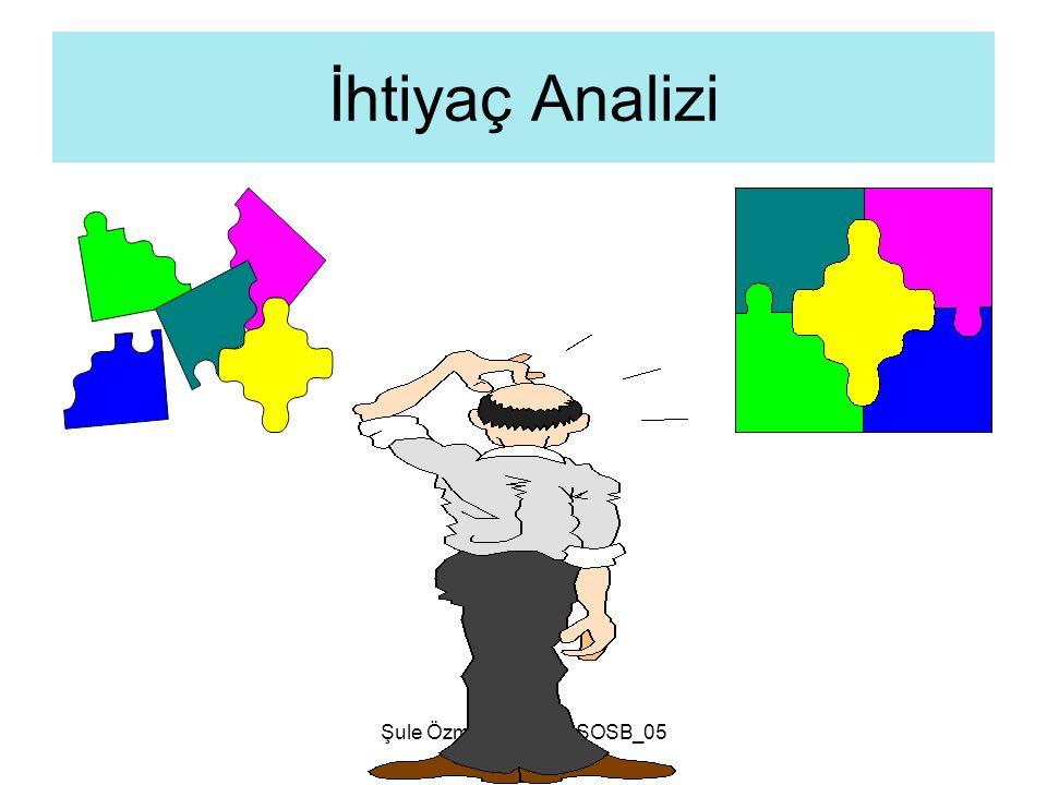 İhtiyaç Analizi Şule Özmen ÇÜ_AHSOSB_05