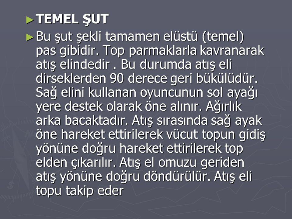 TEMEL ŞUT