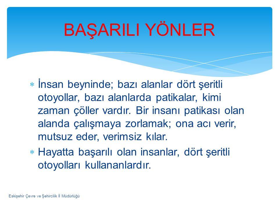 BAŞARILI YÖNLER
