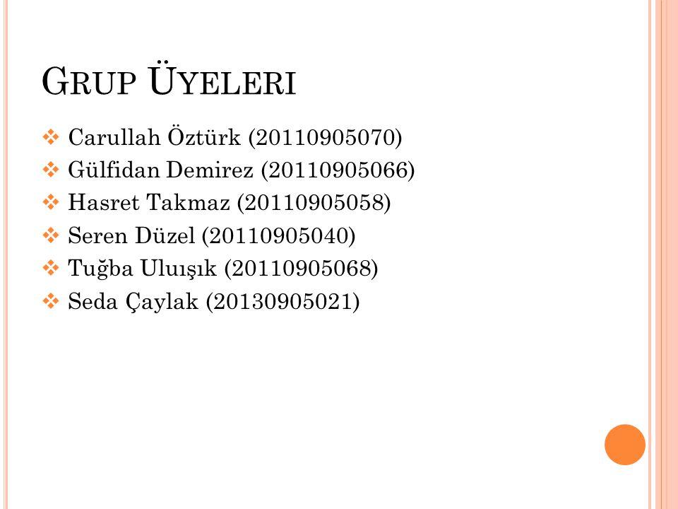 Grup Üyeleri Carullah Öztürk (20110905070)