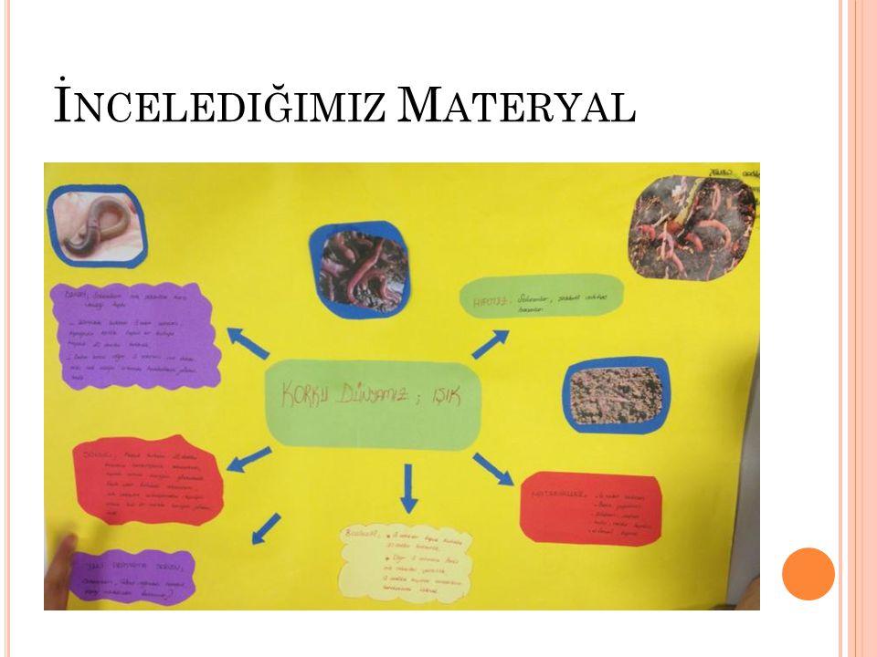 İncelediğimiz Materyal