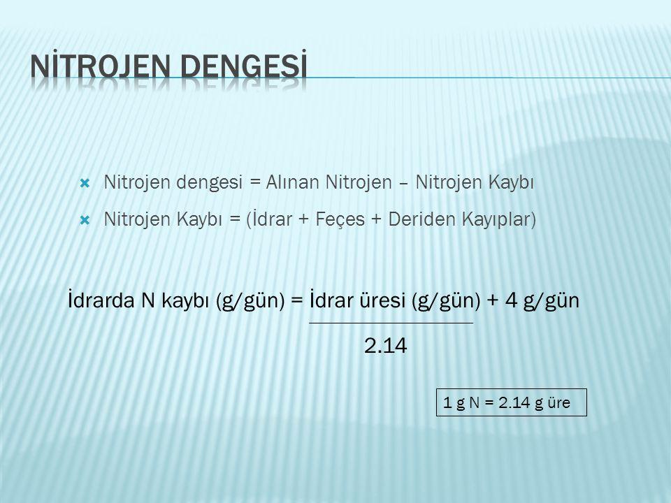 Nİtrojen dengesİ Nitrojen dengesi = Alınan Nitrojen – Nitrojen Kaybı. Nitrojen Kaybı = (İdrar + Feçes + Deriden Kayıplar)