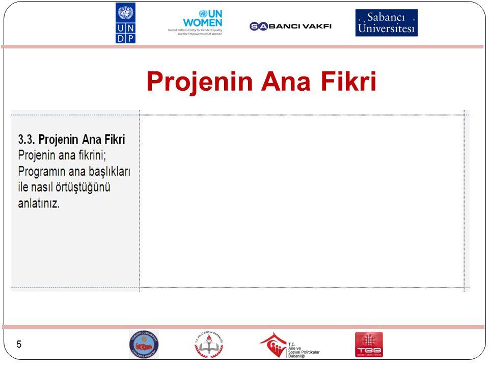 Projenin Ana Fikri