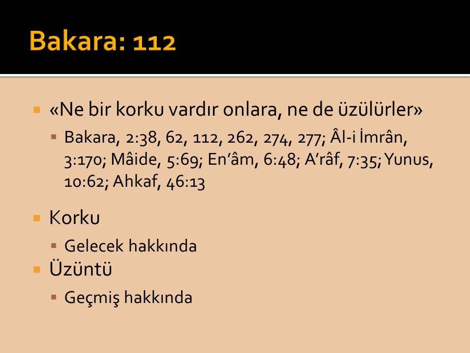 Bakara: 112 «Ne bir korku vardır onlara, ne de üzülürler» Korku Üzüntü