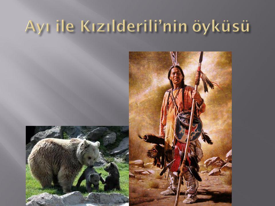 Ayı ile Kızılderili'nin öyküsü