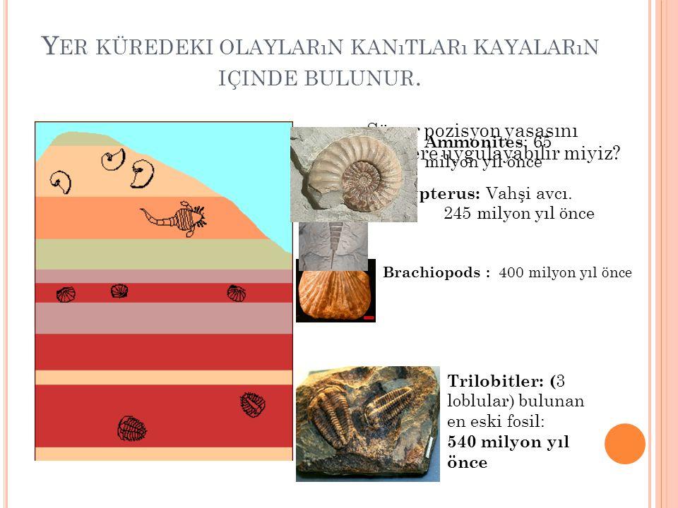 Yer küredeki olayların kanıtları kayaların içinde bulunur.