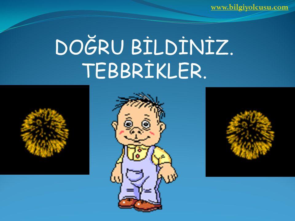 www.bilgiyolcusu.com DOĞRU BİLDİNİZ. TEBBRİKLER.