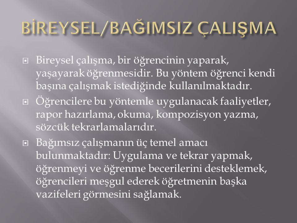 BİREYSEL/BAĞIMSIZ ÇALIŞMA