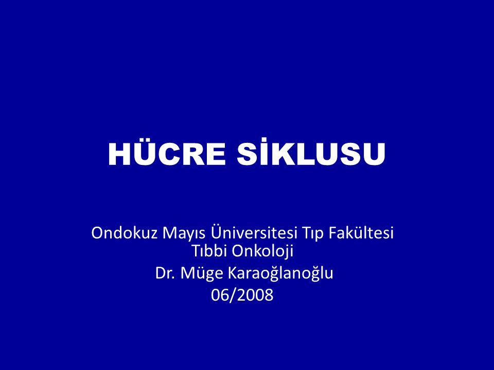 Ondokuz Mayıs Üniversitesi Tıp Fakültesi Tıbbi Onkoloji