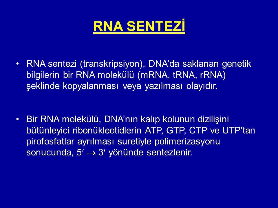 RNA SENTEZİ