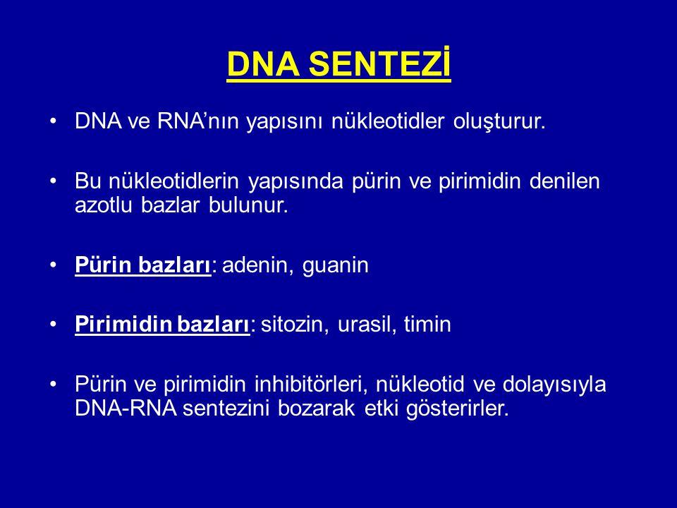 DNA SENTEZİ DNA ve RNA'nın yapısını nükleotidler oluşturur.