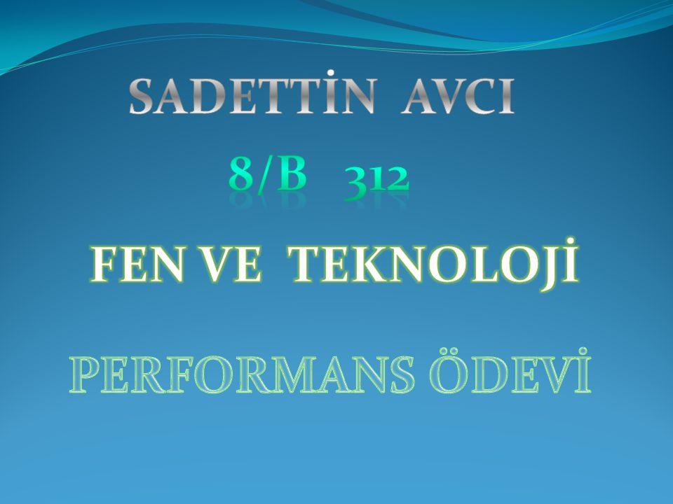 SADETTİN AVCI 8/B 312 FEN VE TEKNOLOJİ PERFORMANS ÖDEVİ