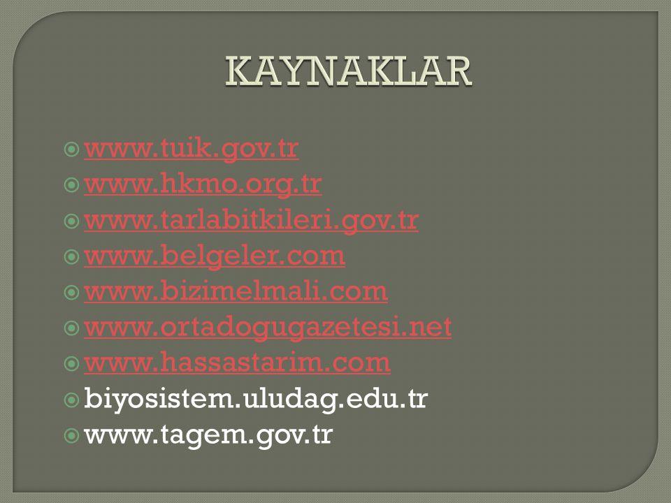 KAYNAKLAR www.tuik.gov.tr www.hkmo.org.tr www.tarlabitkileri.gov.tr