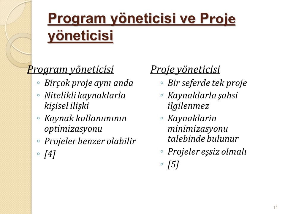 Program yöneticisi ve Proje yöneticisi